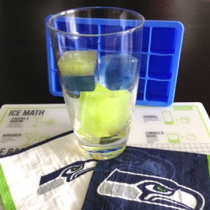 Seahawks Perfect Cube Ice Cubes