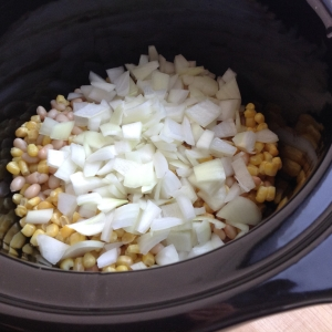 Slow Cooker White Chicken Chilli Ingredients in Pot