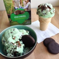 Thin Mints Ice Cream