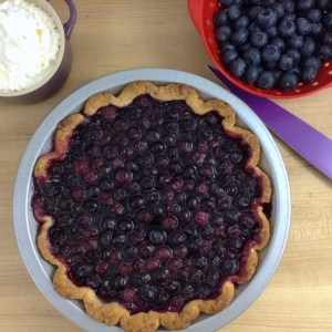 blueberry-pie-overhead