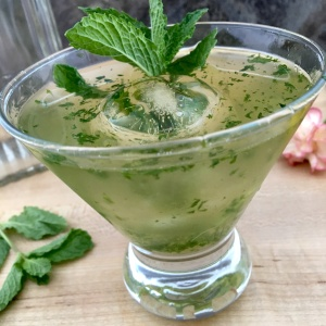 mint julep with sphere ice lifestyle