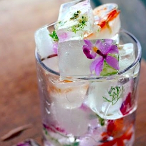 Floral Ice Cubes Square