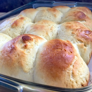 Hawaiian bread roll just baked