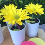 Ray of Sun Flower Pot Sundaes Zoom