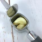 61-27251_tovolo_large_capacity_garlic_press_garlic